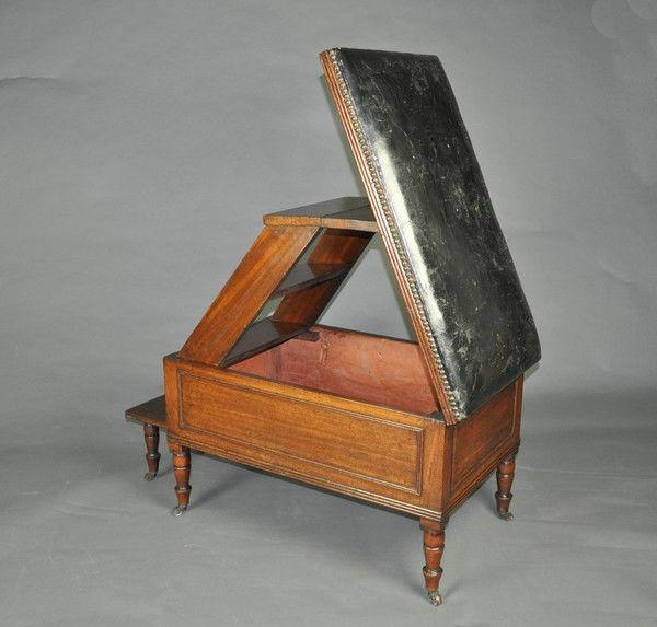 Regency Metamorphic Stool/Library Steps