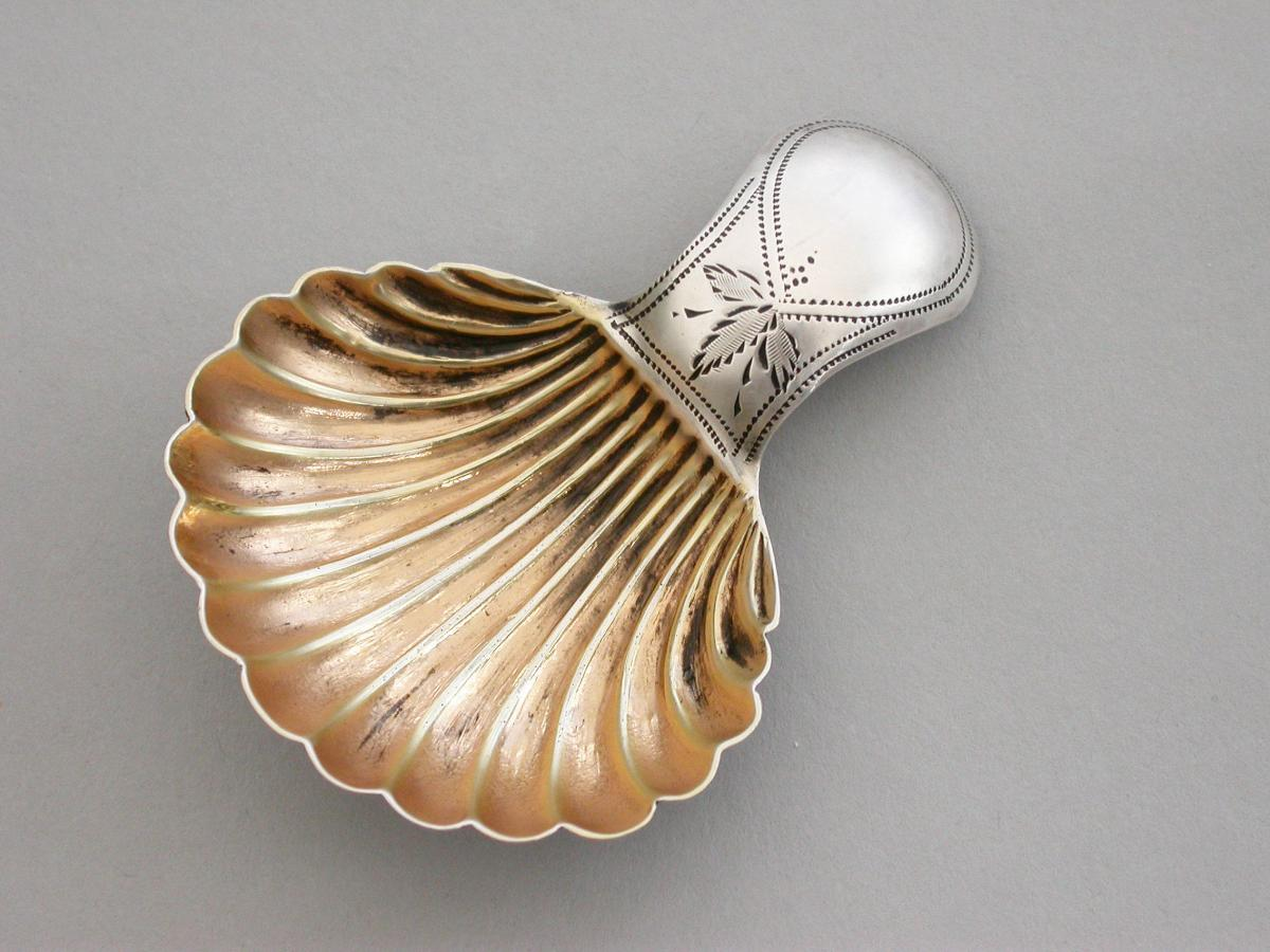 Small George III Silver 'Scallop Shell' Caddy Spoon