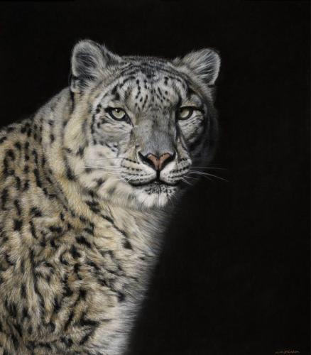 Gary Stinton Eye to Eye IV - Snow Leopard 2014 Pastel on museum board 20.5 x 18ins (52 x 45.75cm)