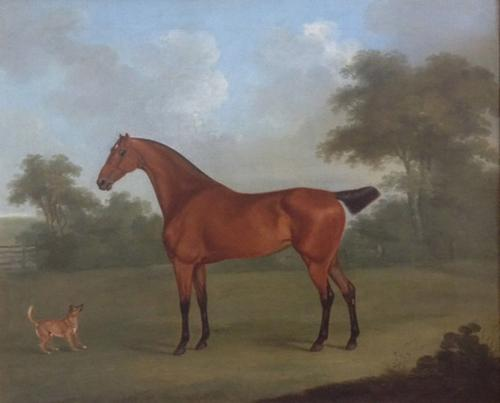 A Chestnut hunter and terrier by John Nost Sartorius (1759 - 1828)