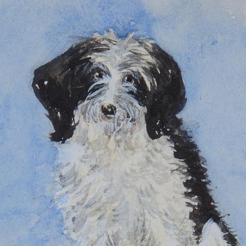 A black and white dog - Lady Emily Dundas (d. 1900)